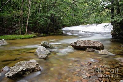 Bartlett Experimental Forest - Bartlett New Hampshire Usa Art Print by Erin Paul Donovan