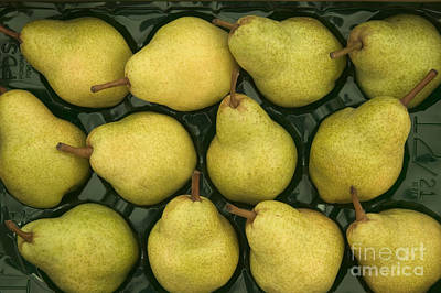 Pyrus Communis Photograph - Bartlett Pears In A Packing Tray by Inga Spence