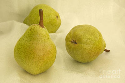 Pyrus Communis Photograph - Bartlett Pears by Inga Spence
