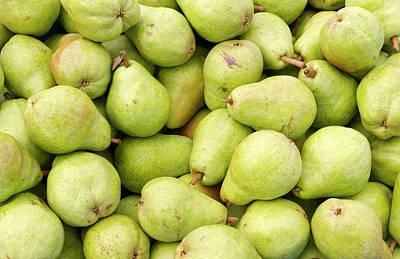 Bartlett Pears Art Print by John Trax
