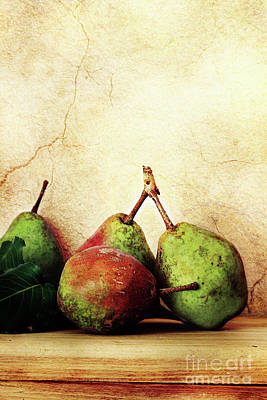 Bartlett Pears Art Print