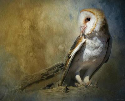 Mixed Media - Bashful Barn Owl by Teresa Wilson