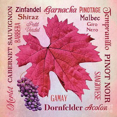 Mixed Media - Basic Red Wine Varieties by Gabriele Pomykaj