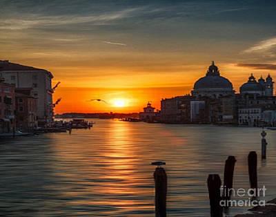 Basilica Di Santa Maria Dela Salute, Venice Art Print by Rod Jellison