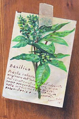 Basilico Original