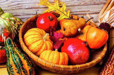 Persimmon Photograph - Basket Full Of Autumn by Garry Gay