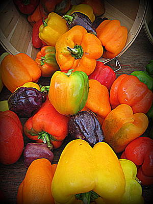 Photograph - Basket Full O'peppers by Suzanne DeGeorge