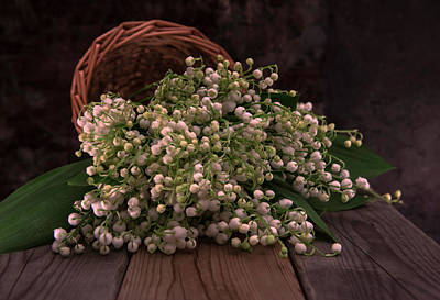 Art Print featuring the photograph Basket Of Fresh Lily Of The Valley Flowers by Jaroslaw Blaminsky