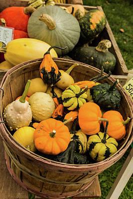 Basket Of Gourds Print by Janet Ballard