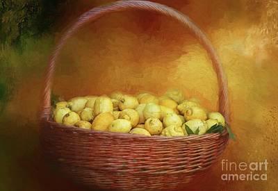 Lemon Mixed Media - Basket Of Lemons by Eva Lechner
