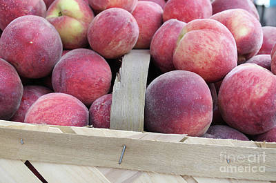 Photograph - Basket Of Peaches by John S