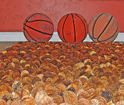 Basketballs And Walnuts Art Print