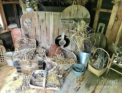 Photograph - Baskets And Herbs by Ruth H Curtis