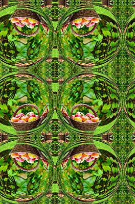 Digital Art - Baskets Of Fruit Art by Sheila Mcdonald