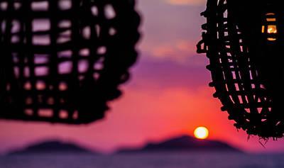 Photograph - Baskets Of Light And A Magenta Sky by Joshua Tree