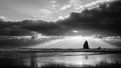 Photograph - Basking In The Light Bw by Don Schwartz
