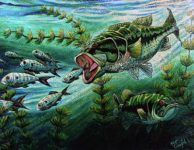 Fish Underwater Painting - Bass Chasing Shads by Bob Crawford