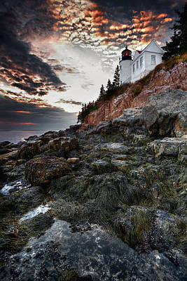 Photograph - Bass Harbor Light by Neil Shapiro