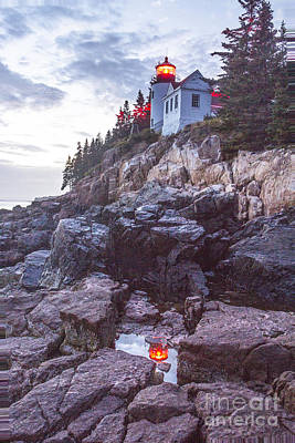 Photograph - Bass Harbor Light Reflection by Crystal Nederman