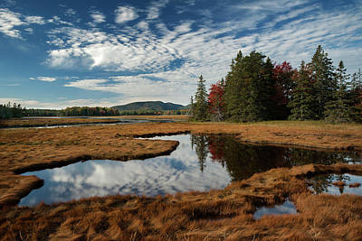 Photograph - Bass Harbor Marsh 2 by Darylann Leonard Photography