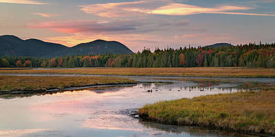 Photograph - Bass Harbor Marsh by Darylann Leonard Photography