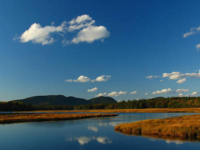 Maine Landscape Photograph - Bass Harbor Marsh by Juergen Roth