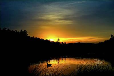 Photograph - Bass Lake Sunrise Duck by Meta Gatschenberger