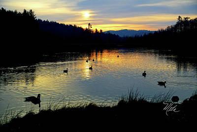 Photograph - Bass Lake Sunrise Geese by Meta Gatschenberger