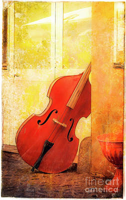 Photograph - Bass Violin by Craig J Satterlee