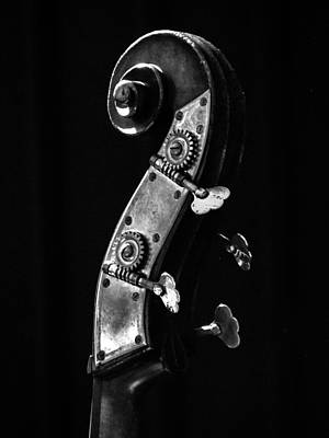 Photograph - Bass Violin by Julia Wilcox
