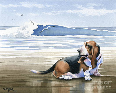 Basset Hound At The Beach Art Print by David Rogers