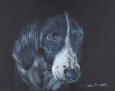 Painting - Basset Hound by John Neeve