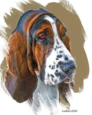 Breed Digital Art - Bassett Hound by Larry Linton