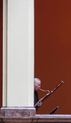 Photograph - Bassoon by David Ralph Johnson