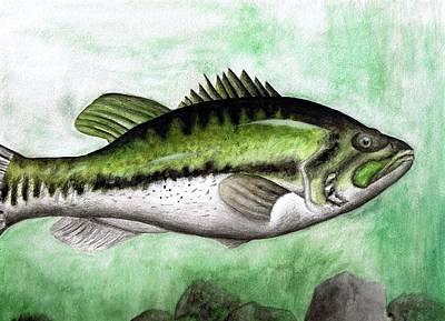 Largemouth Drawing - Bassy by Brandon Sharp