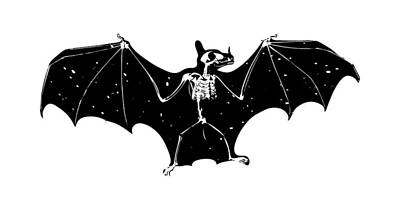 Bat Skeleton #1 Original by Skulls