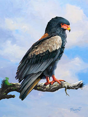 Bateleur Eagle Art Print by Anthony Mwangi
