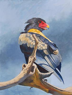 Painting - Bateleur Eagle by Deon West