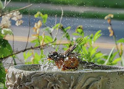Photograph - Bath Time by C H Apperson
