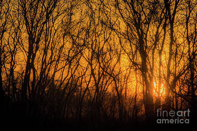 Photograph - Batik Sunset by Cheryl McClure