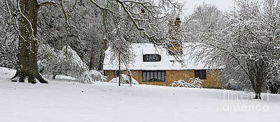 Photograph - Batsford Arboretum In Winter by Tim Gainey