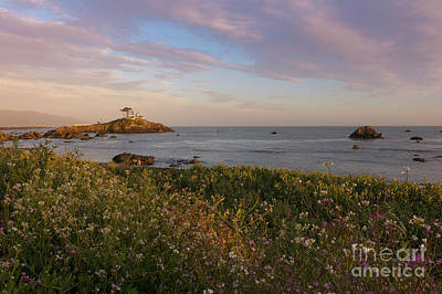 Photograph - Battery Point Evening Light by Idaho Scenic Images Linda Lantzy
