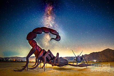 Photograph - Battle At Borrego Springs by Jim DeLillo