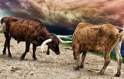 Photograph - Battle Before The Storm by Diana Mary Sharpton