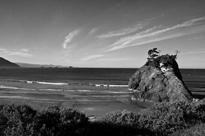 Achieving Royalty Free Images - Battle Rock Beach Oregon Royalty-Free Image by Lee Santa