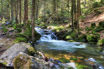 Photograph - Bavarian Stream by Sean Allen
