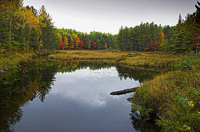 Baxter State Park Small Pond In Autumn Maine Art Print by Brendan Reals