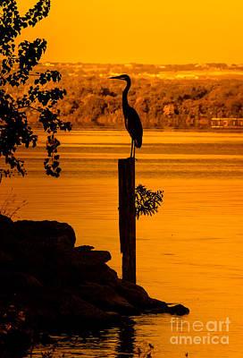 Cabin Window Photograph - Bay At Sunrise - Heron by Robert Frederick