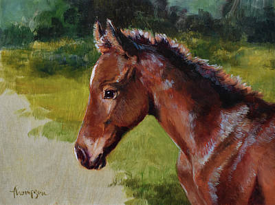 Baby Horse Painting - Bay Foal by Tracie Thompson