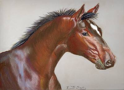 Painting - Bay Horse by Ruth Seal